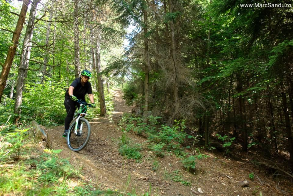 andreea tabara mountain bike campulung